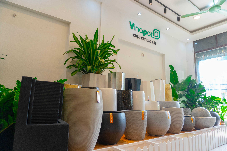 Hà Nội - Chậu composite vinapot DSC00013