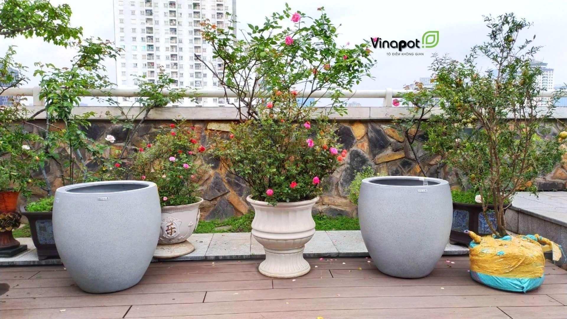 Chậu cây cao cấp Vinapot phù hợp với không gian xanh gia đình