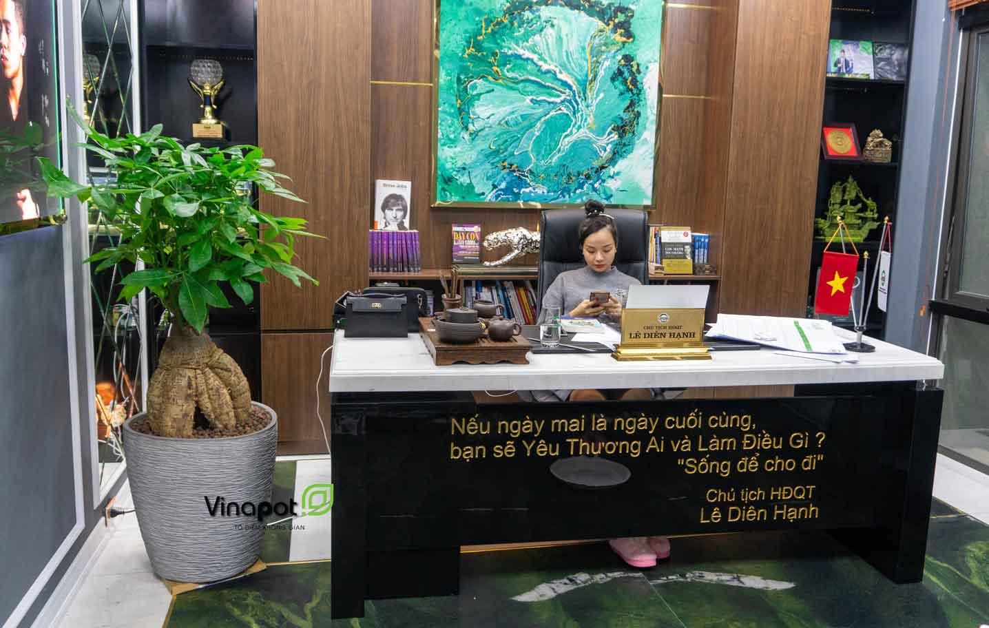 Chậu composite Esteras trong không gian văn phòng